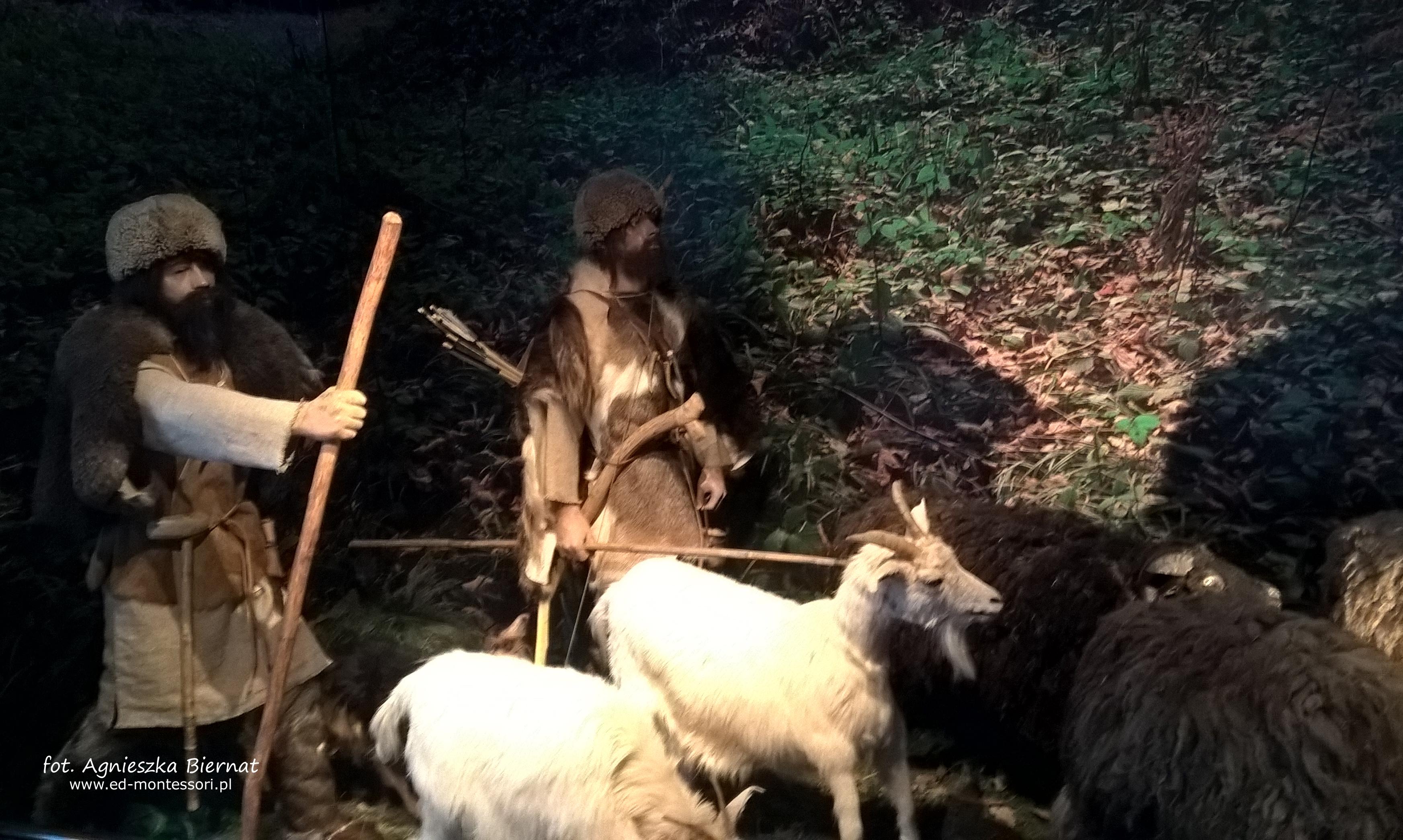 Pasterze ze schyłku epoki kamienia